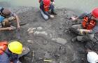 У Панамі знайшли останки морської корови, яка жила 20 млн років тому