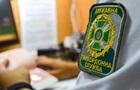 Прикордонникам приходять фейкові SMS про  третій Майдан  - ДПСУ