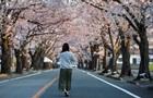 Фукусима-1. Изъятие топлива и возвращение жителей