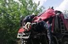 У Миколаївській області лоб в лоб зіткнулися дві вантажівки