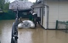 Негода в Україні повалила дерева і затопила вулиці
