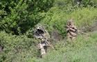 Загострення на Донбасі: 17 обстрілів, загинув боєць