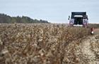 Мінагрополітики очікує рекордний урожай зернових