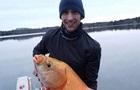 У США рибалка виловив гігантську рибу-мутанта