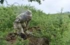 Військові розповіли, як захищають боєприпаси під час спеки