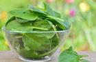 Німецькі вчені вважають екдистерон у шпинаті допінгом