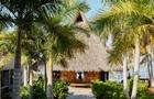 Airbnb запустив сервіс оренди замків та островів