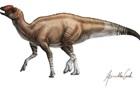 У США виявили новий вид динозаврів