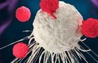 Знайдено несподіваний засіб проти раку