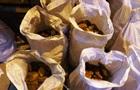 Полиция изъяла янтаря на $30 млн