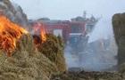 В Одеській області дитина згоріла у стозі сіна
