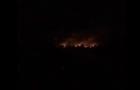 В Киеве горит парк Дружбы народов