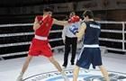 ФБУ может ликвидировать профессиональный бокс в Украине