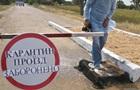 У Полтавській області через сказ ввели карантин