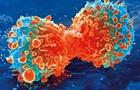 Совершен прорыв в лечении смертельных форм рака