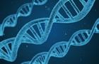 Вчені виділили гени, пов язані з розвитком шизофренії