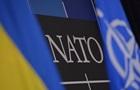 Оціночна місія НАТО приїде в Україну
