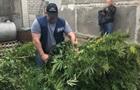 На Херсонщині батько поліцейського організував наркобізнес