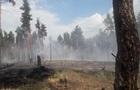 Масштабні пожежі охопили ліси Прикарпаття