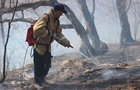 У Криму 500 осіб гасять велику лісову пожежу