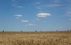 Как Украине разбогатеть. Доклад Всемирного Банка