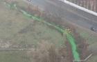 У Києві позеленіла річка
