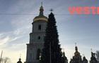 У центрі Києва встановили головну ялинку країни