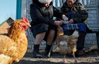 За вбивство курки українця засудили на п ять років