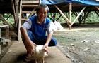 В Индонезии нашли курицу с четырьмя ногами