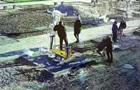 Житель Житомира побив жінку з дитиною на руках