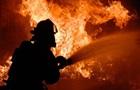В Запорожье при пожаре погибли пенсионерка и ее сын
