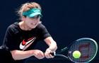 Свитолина - Дэвис: прогноз и ставки на матч второго круга Australian Open