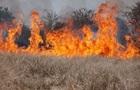 Кількість пожеж збільшилася у зв язку з теплою зимою - ДСНС