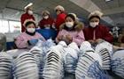 В Китае за неделю возведут спецбольницу из-за нового вируса
