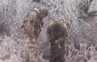 На Донбасі військові лікарі врятували пораненого фронтового собаку. 18+