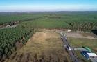 Суд у Німеччині призупинив вирубування лісу на місці будівництва заводу Tesla