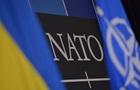 В НАТО сделали заявление по обострению на Донбассе