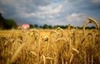 Украина вчетверо нарастила экспорт зерна за 10 лет