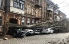 Ураган в Украине валит столбы и деревья, есть жертвы