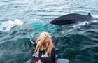 Біля берегів Мексики врятували горбатого кита