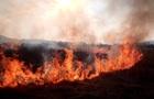На Закарпатті сталася пожежа в Долині нарцисів