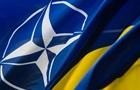 США поддерживают членство Украины в НАТО