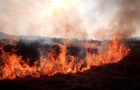 За сутки на Киевщине случилось 124 пожара в экосистемах