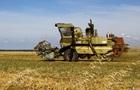 Тепла зима і суха весна: українські аграрії бояться втратити врожай