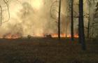 Пожежа в Чорнобилі: загоряння ще не загасили