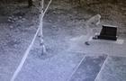 На видео попало разрушение памятника бойцам Айдара