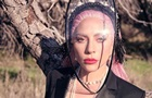 Леди Гага снялась в пиджаке на голое тело