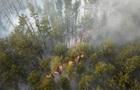 Радіація понад норму. Чи безпечна пожежа зони ЧАЕС