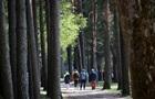 У лісовому господарстві України планують працевлаштувати кілька тисяч осіб