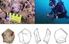 Вперше під водою знайшли поселення первісних людей